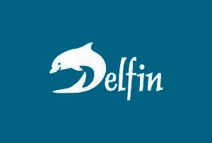 logo deflin